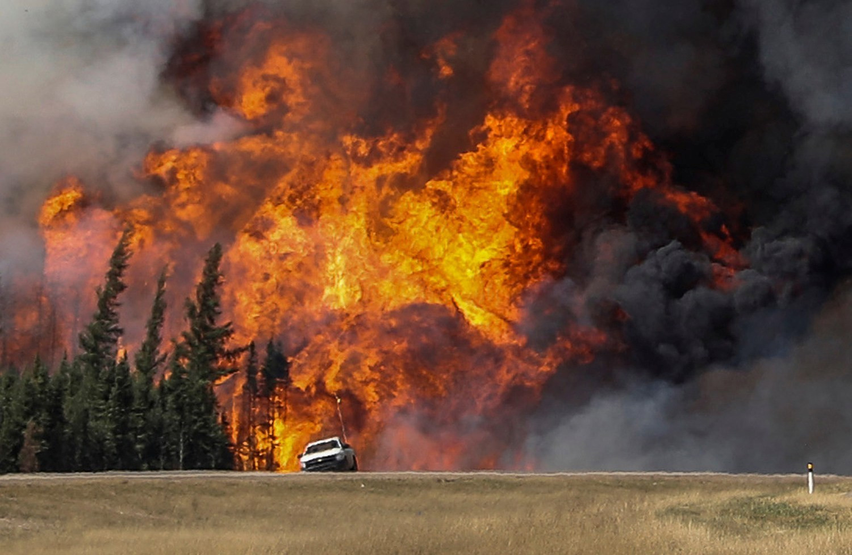 史上最大森林灾难 加拿大火灾后的废墟