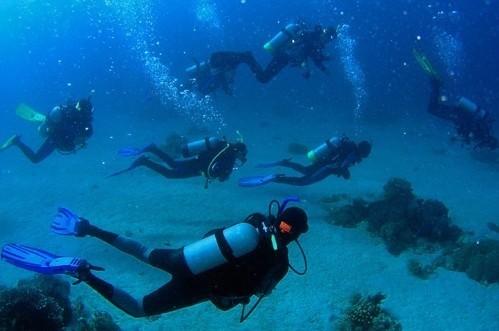 仔湾旁) 三门岛潜水基地 三门岛(又称沱泞岛),属广东省惠州市大亚湾区